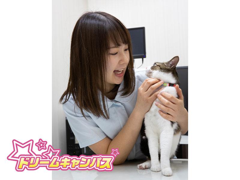TSBペットでしか学べない技術 動物看護師編